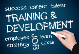 training-and-development